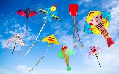 夏日風箏季:一同享受遨遊樂趣
