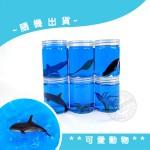 瓶裝海洋動物水晶黏土(冰涼舒壓觸感+附海洋動物模型)