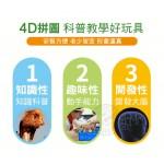 4D立體動物拼圖(野生+可愛動物)(ST安全塑料)