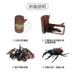 4D立體甲蟲系列模型拼裝積木(附主題收納盒6066)