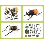 4D立體甲蟲系列模型拼裝積木(附主題收納盒6066)(4入裝)