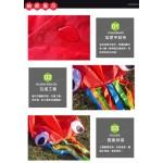 八爪章魚造型風箏(軟式風箏)