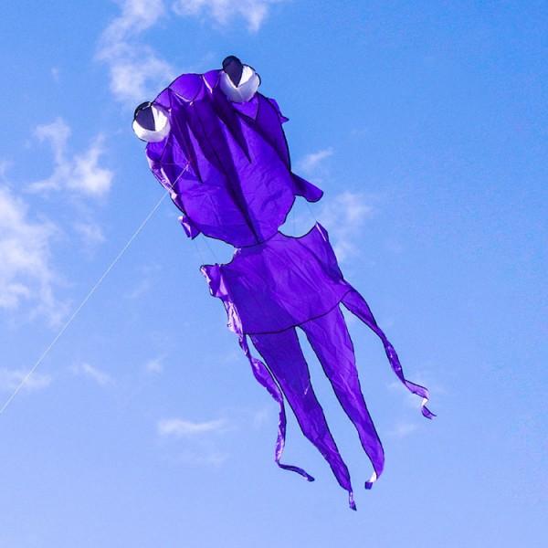 大眼金魚造型風箏(軟式風箏)