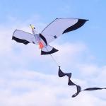 3D立體海鷗造型風箏(140*204)(全配/附150米輪盤線) (無法超商取貨)