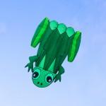 大青蛙造型風箏(115*145)(軟式風箏)(全配/附150米輪盤線)